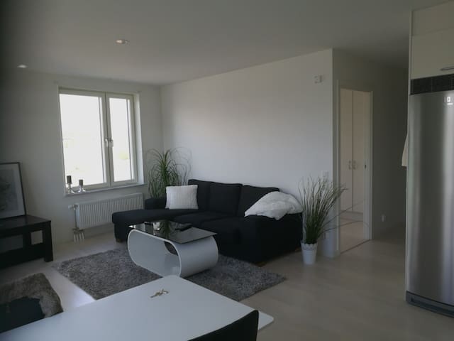 A bright flat close to Haga park and Sth station. - Solna - Apartment