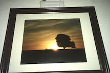 Sunset in the Northern Palouse $30