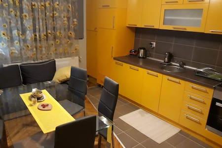 Narcis Apartment in City Centre Valjevo