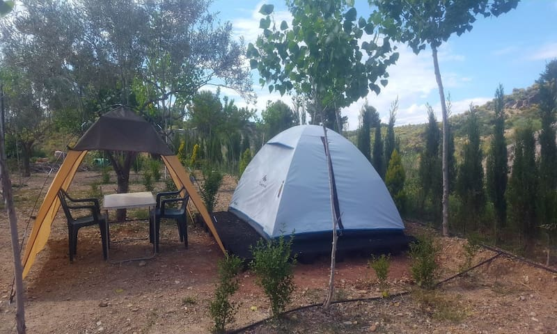 Basic Tent for 2 - ECO-CAMPING (2)