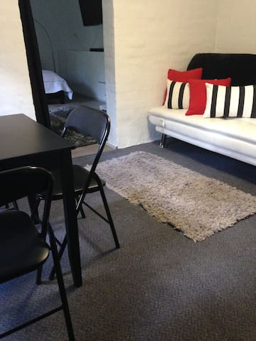 Living area with easily converted, comfortable sofa bed