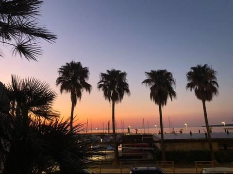 Studio front de mer Cannes Palm Beach direct plage