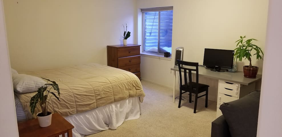 Private Basement Apartment at foot of Rockies.