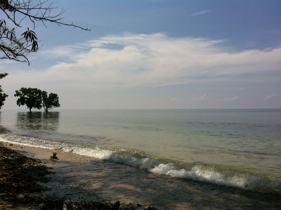 Coastal view along our house