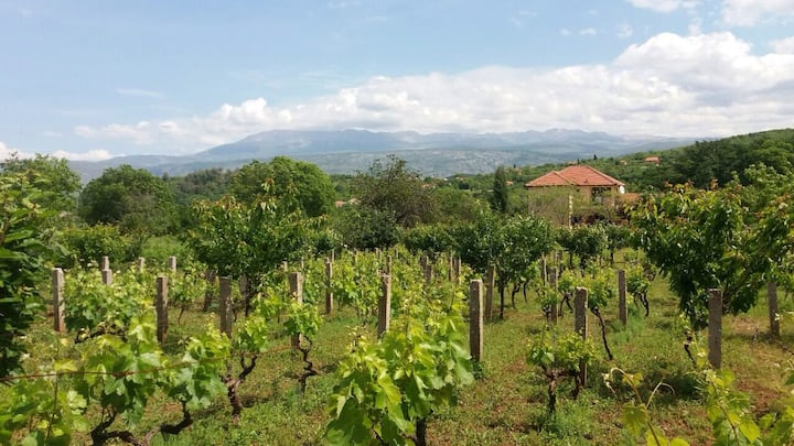 Charming Vineyard and Cherry Villa near Mostar