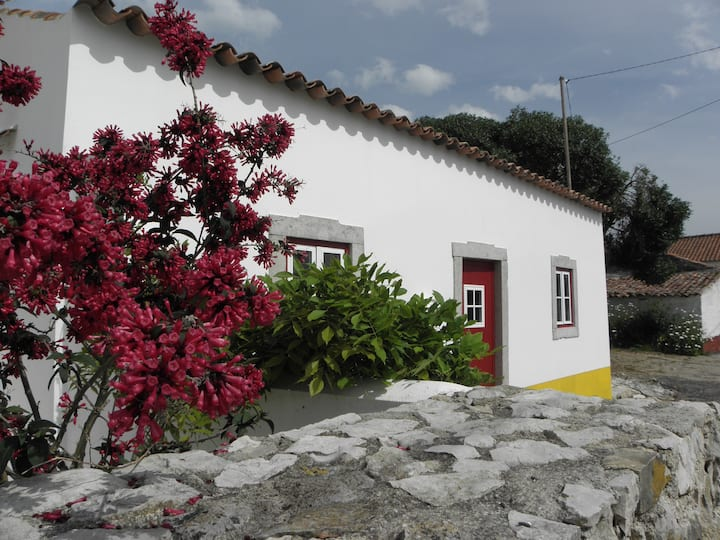 Typical House with garden,near the beach