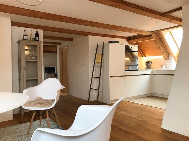 Moderne Dachwohnung in 300 jährigem Haus