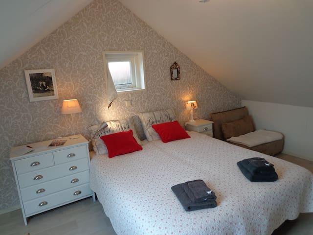 Modernes, gemütliches Dach Appartement, ca. 35 M2 - Nieuwvliet - Loft
