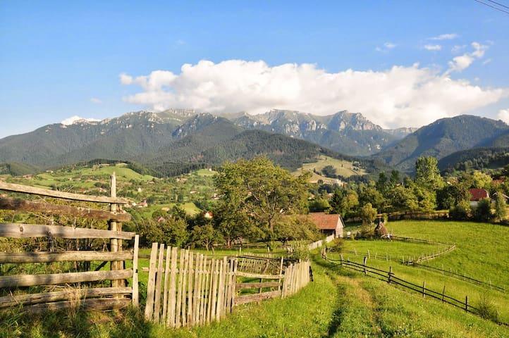Secluded Hilltop Transylvanian Villa - Bran