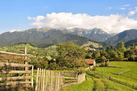 Secluded Hilltop Transylvanian Villa - Bran - Villa