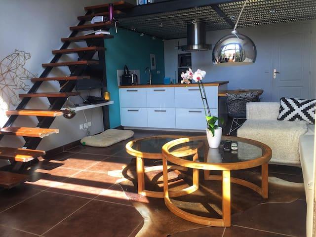 Joli duplex/loft avec jardin privatif