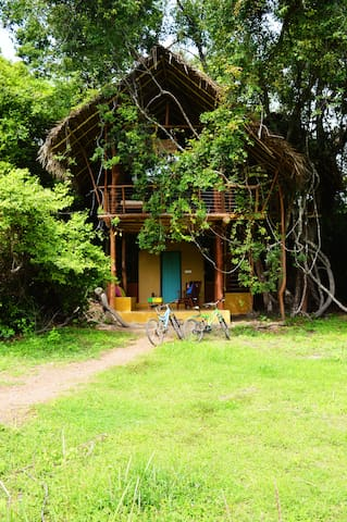Back of Beyond, Sigiriya - Family Tree house - Sigiriya