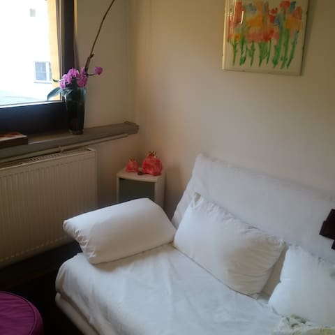 Haus Hibiscus: room in the Middle of Aschaffenburg - Aschaffenburg - House