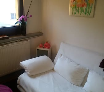 Haus Hibiscus: room in the Middle of Aschaffenburg - Aschaffenburg - Talo