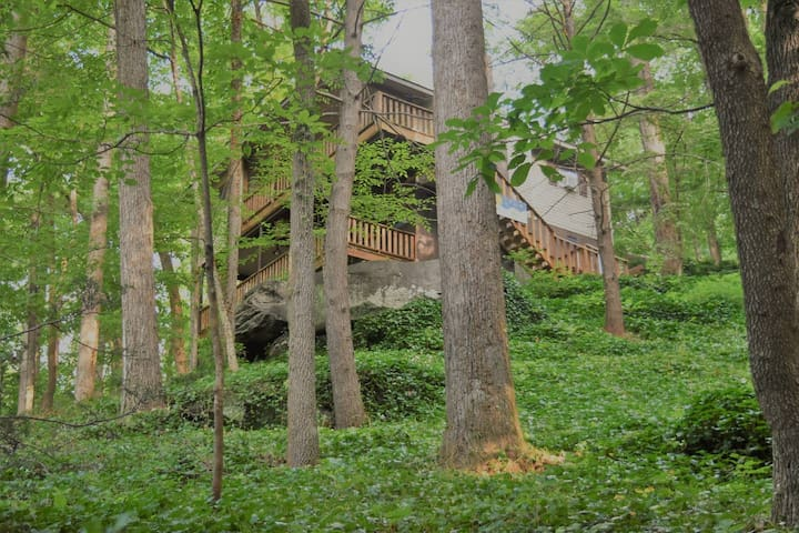 Cabin near Chimney Rock-Lake Lure-Asheville
