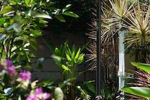 理想国【良筑】黑胶摄影电影房/五分钟到中山路/中山公园/鼓浪屿周边/近植物园/森系/亲近自然