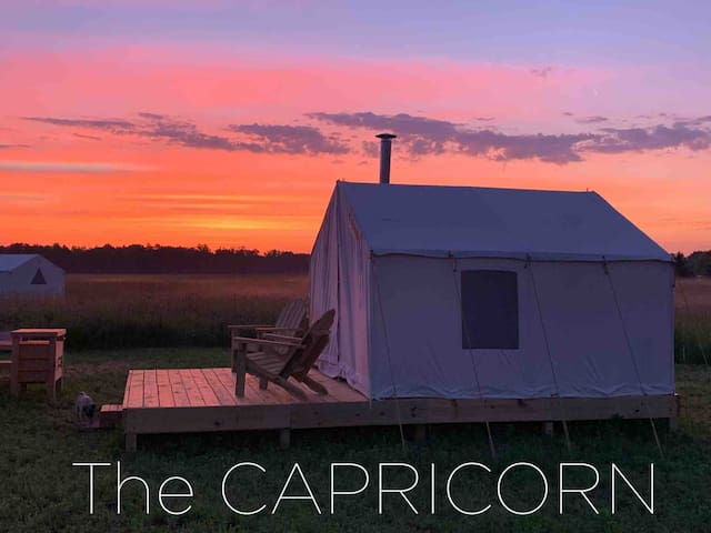 the CAPRICORN. Sunrise never looked so good.