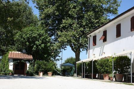 Soggiorno in Agriturismo a 3km dal centro di Pisa - Mezzana-colignola