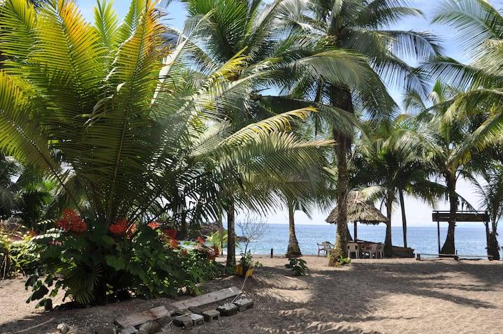 Nuquí: selva y mar. Playa Guachalito.