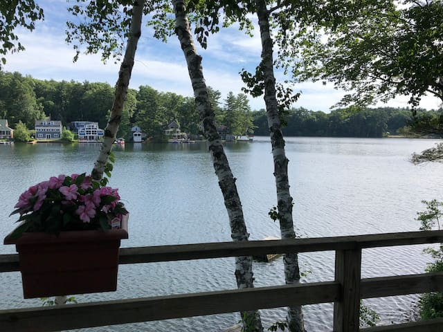 Welcome to Birch Grove on Lake Boon