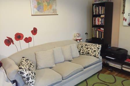 Cozy 1 Bedroom in Upper East Side - Apartment