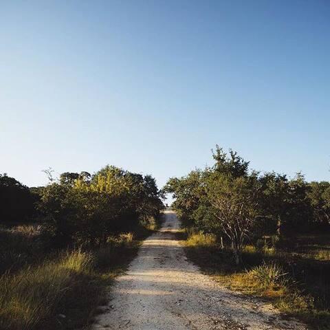 El Nopal Tipi | OESTE