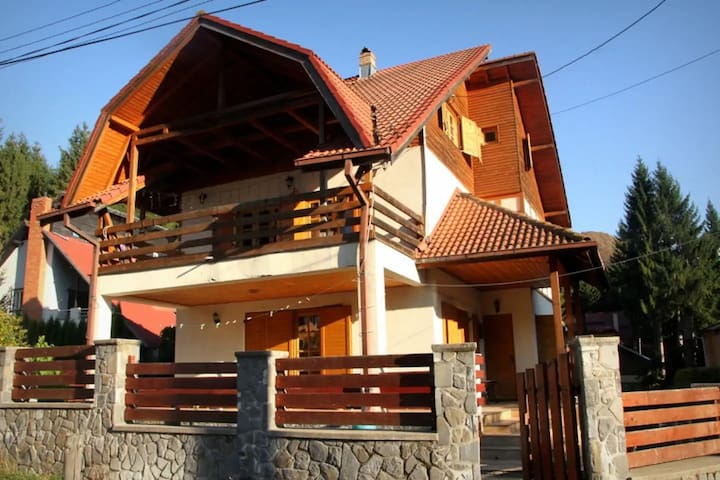 Sinaia 300 sq.m. villa with mountain heights view