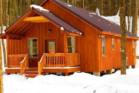 Adirondack Cabin Tug Hill in Altmar, New York - Altmar