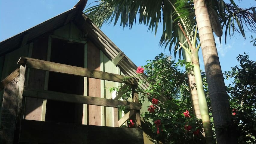 A place between the sea and the jungle! - Paranaguá - Nature lodge