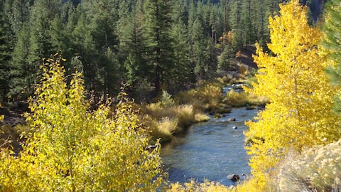 River View Cabin~40 Acres on Scenic Feather River