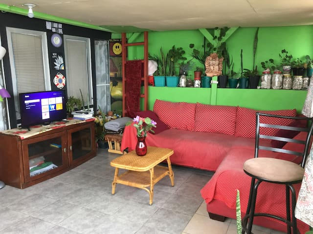 Bright and spacious outdoor living room. Enjoy Netflix and the fresh ocean breeze. Comfy sofa bed is great for sleeping or relaxing!