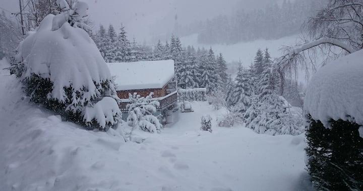 Grand chalet individuel, domaine skiable La Bresse