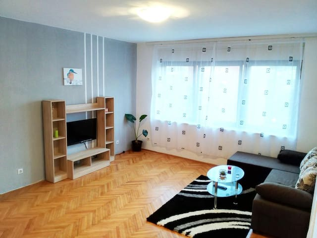 Apartment PREMIJA - Vrdnik - Appartamento
