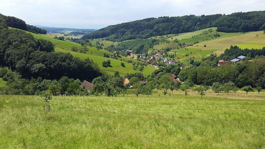 Schwarzwald Ferienwohnung Am Bildstein in Freiamt