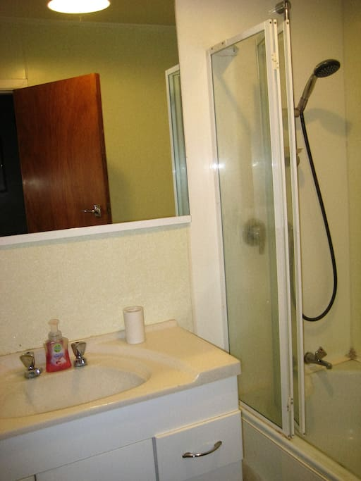 Private bathroom with separate toilet. Infinity gas hot water system.