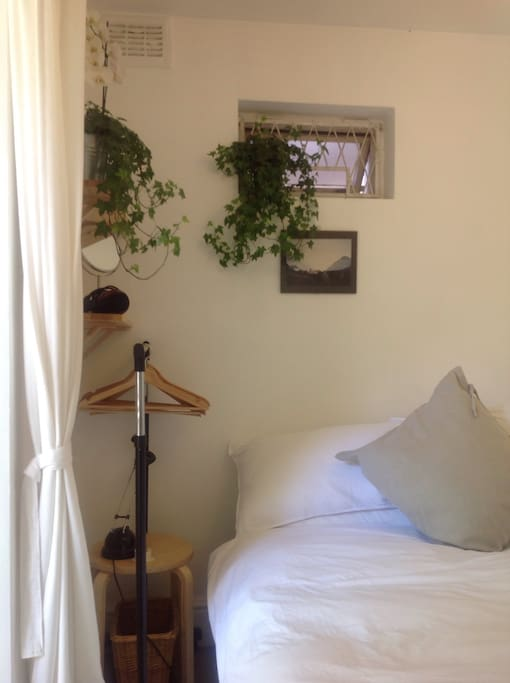There are always plants somewhere around 101 Camden Road, this room is no exception. You'll also have a small clothes rack and a hairdryer as well