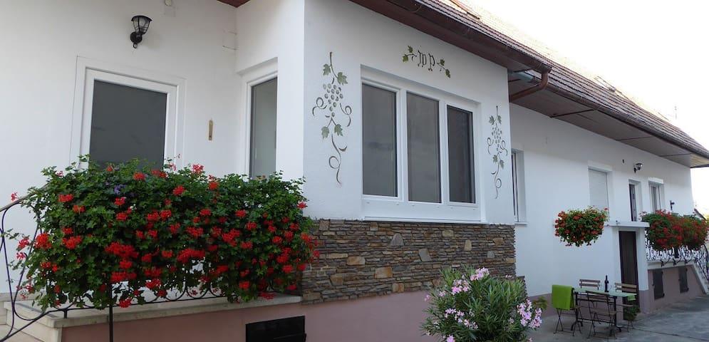 Appartementhaus Corinna für 4+
