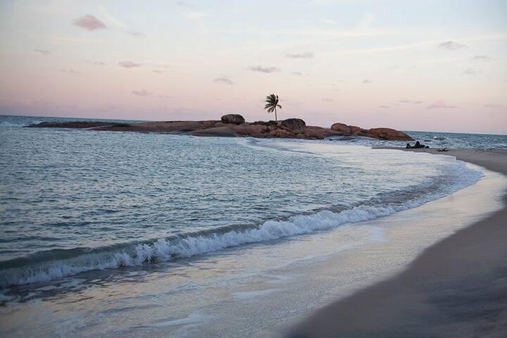 A ilha do coqueiro que fica a direita da casa