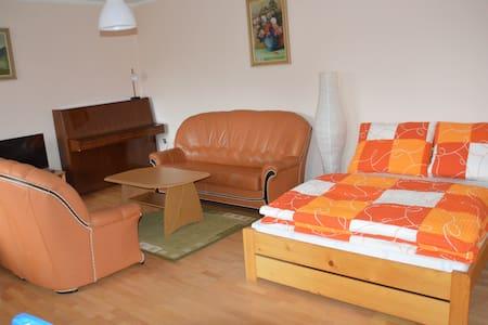 Dvojizbovy apartman s krbovymi kachlami - Stará Lesná - Villa - 2