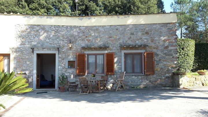 Appartamento con giardino e piscina,8km da Firenze