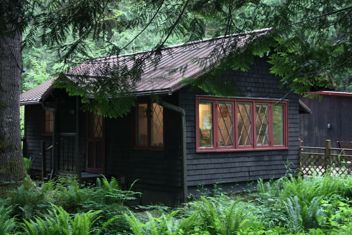 Dancing Bear Cottage - Mount Hood Village