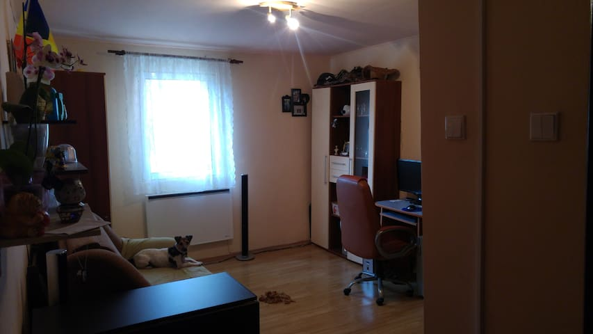 Casual studio - Târgu Mureș - Apartment