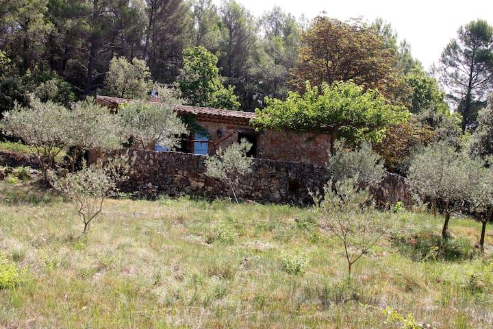 cabanon provencal en pierre - Aups - Casa