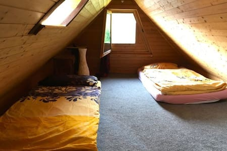 Small Attic Room in Synergy Village (half private) - Hombrechtikon