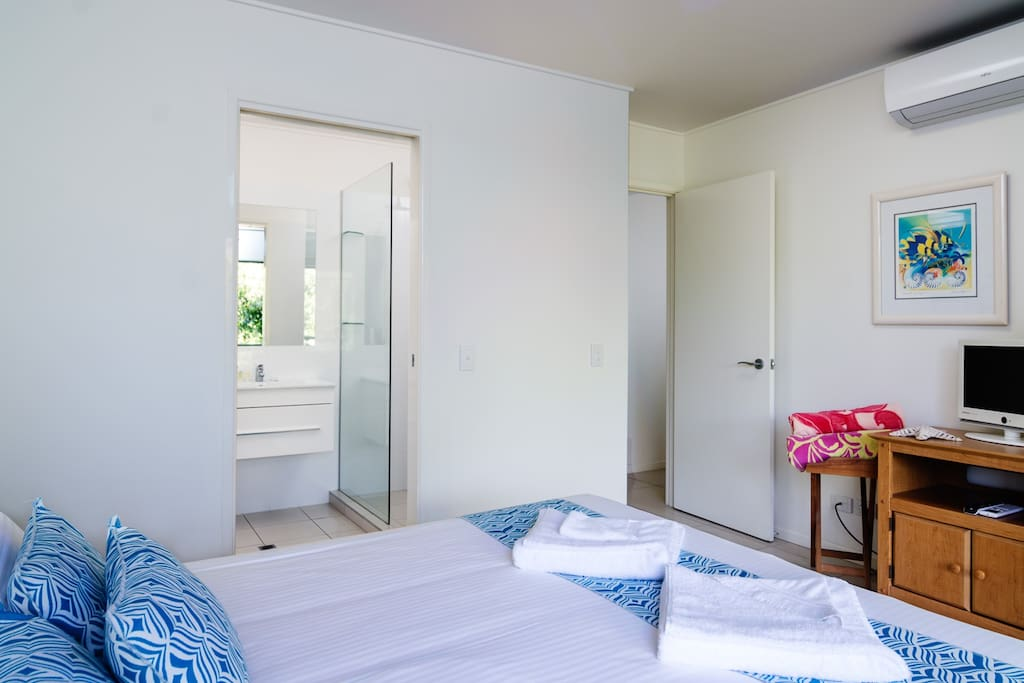 Main Bedroom with ensuite and television in one the beach houses.