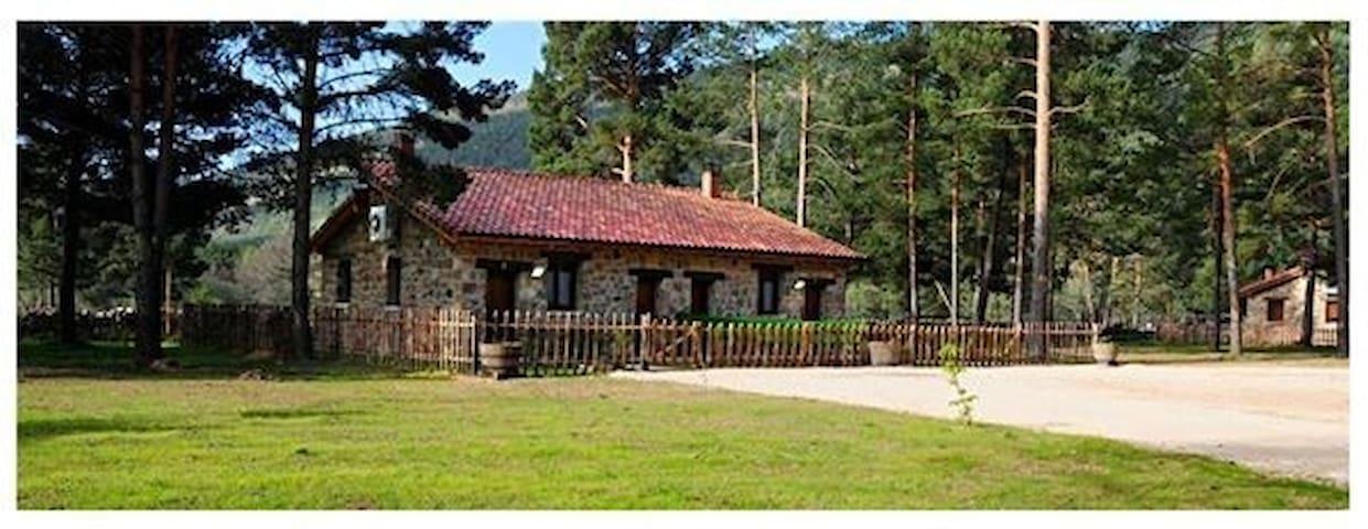 casa en la montaña - Vinuesa - Hus