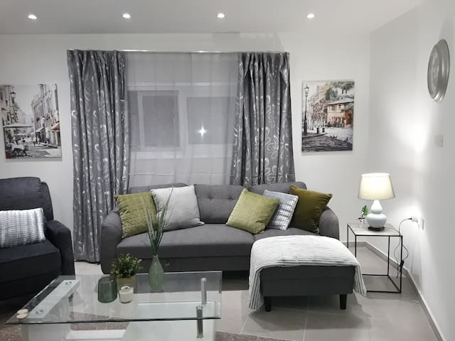 Michaelides two bedroom apt in Kato Pyrgos 3