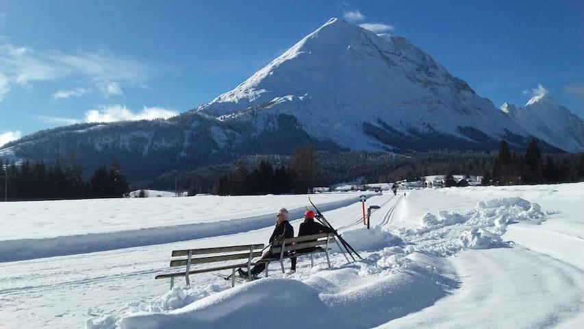 Tiroler Bergidylle am Waldesrand