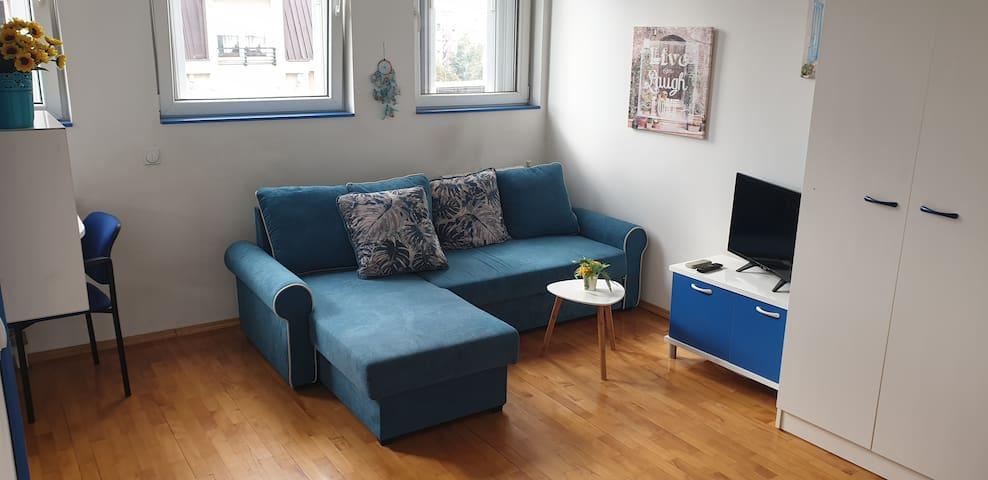 Vekis' Blue Studio