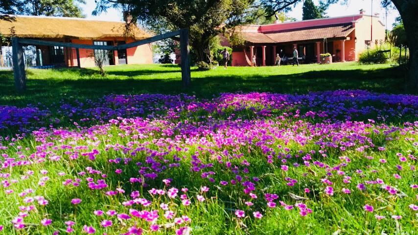 Casa de Campo Nueva Erin